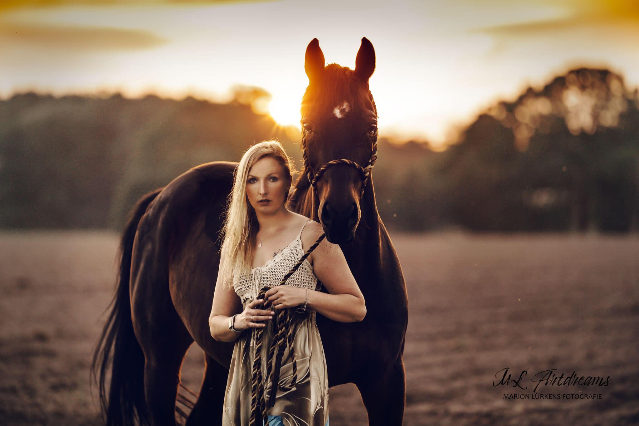 Pferdeliebe-Sonnenuntergang-Warmblut