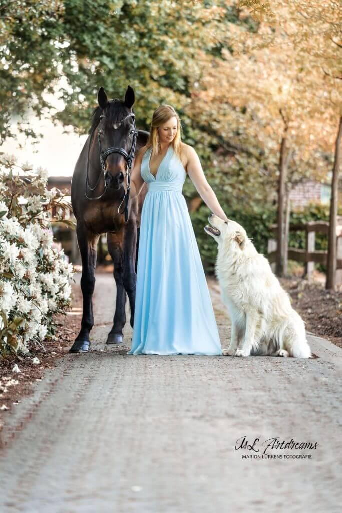 Pferd-und-Hund