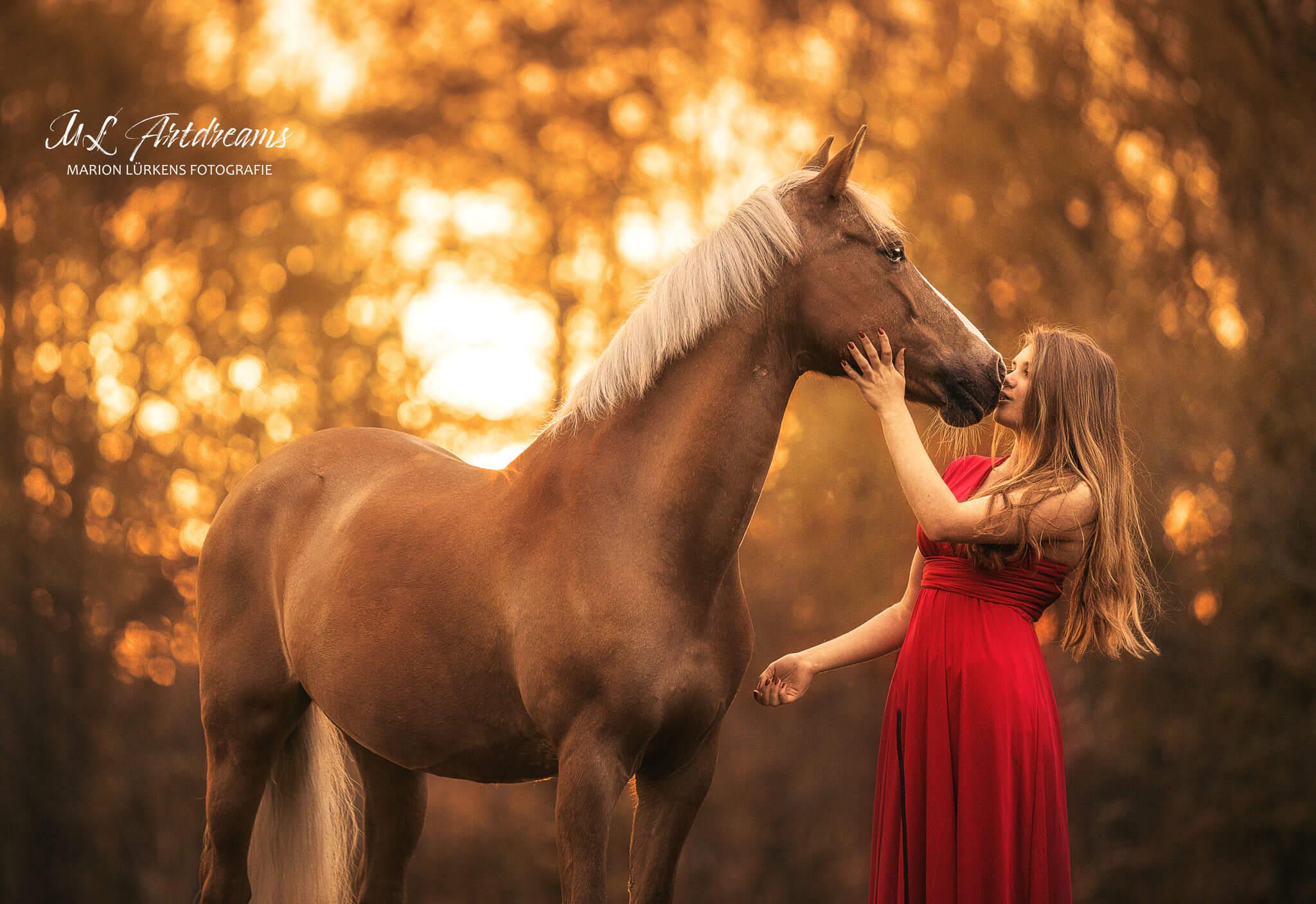 Reitpony-Pferdemaedchen
