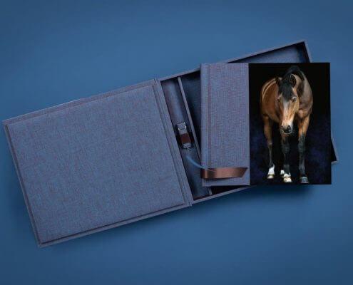 Fotoalbum-mit-Acrylcover-Low-Flat-Bindung-und-USB-Stick