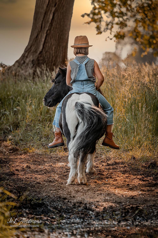 Sheltlandpony-Ponyliebe