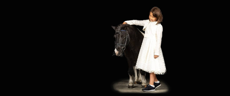 Sheltlandpony-Ponytraum