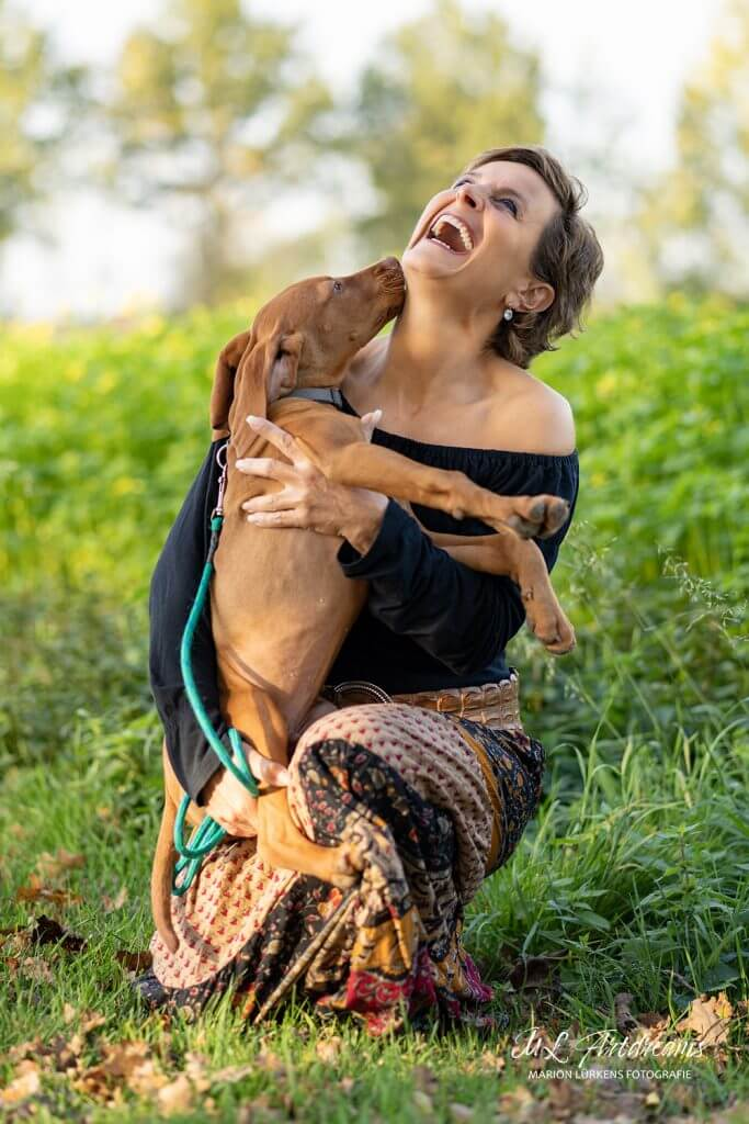 welpe-vizla-vorstehhund