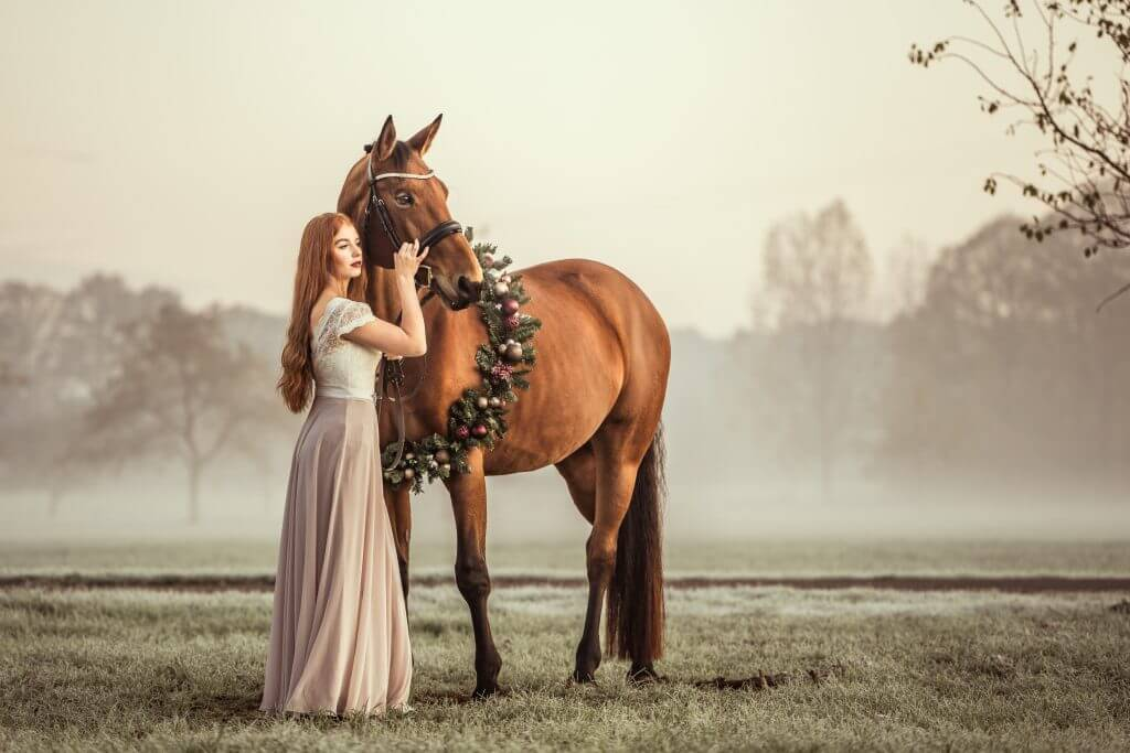 Pferd-mit-Weihnachtskranz